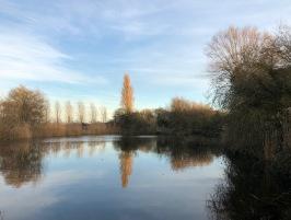 Pond at Hurdle Hall