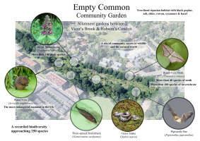 Empty Common BioBlitz