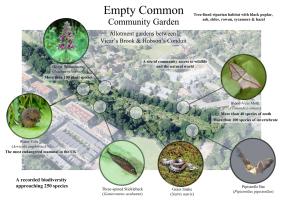 Empty Common BioBlitz
