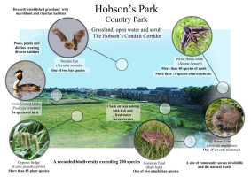 Hobson's Park BioBlitz