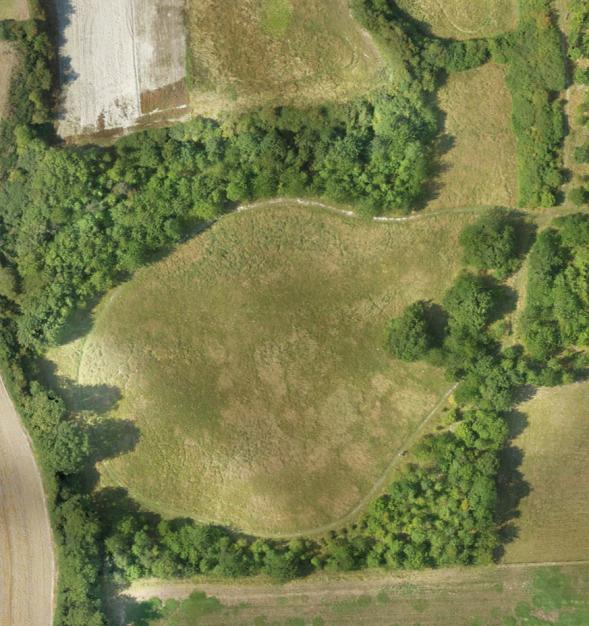 Aerial view of Reach Wood Meadow