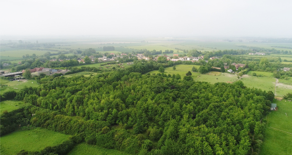Aerial view of Reach Wood