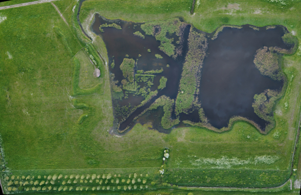 Aerial view of Tubney Fen ponds